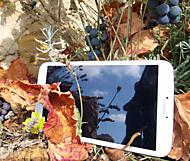 podzim se Samsungem (davisuch) – –