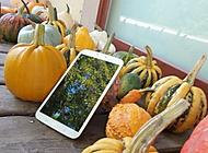BarvyPodzimu (davisuch) – Samsung Galaxy S4 Zoom