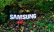 Samsung na houbách