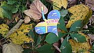 Spadané listí je symbolem podzimu